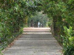 島の西側を走るフロンティア・ロード。 昔の線路跡を道路にしたみたいです、集落から西港までサイクリングに最適。