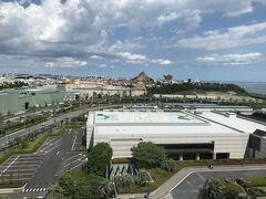 お昼頃に車で舞浜へ向けて出発!  オリンピック期間は首都高料金が1000円上乗せだと!? そのせいか空いてて、あっという間に到着。