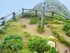 「ゴロタ岬」もお花畑に囲まれています!  右側も左側も本来なら海の絶景が拝めるはずですが それは霧に包まれてしまってました。