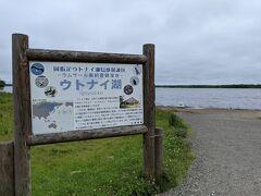 昼食後は徒歩でウトナイ湖へ。