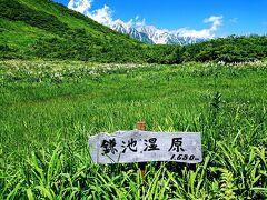 湿原の先には白馬三山。