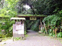 まずは、奥さんのリクエストで『苔の里』です。 日用町にあるのですが、苔に力を入れている様です。 苔の管理の協力金500円が入場料変わりです。