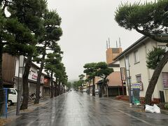 この先が出雲大社という神門通り。 って本当に誰もいない…。 ちなみに時刻は月曜日の朝8時半。 雨も降ってるけどそれにしたって…本当に人っ子一人いない。 結構雨が降ているので傘をさしての出雲観光。