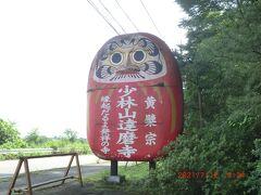 少林山・達磨寺:道路沿いの目立つ達磨さん