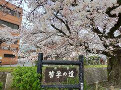 京大を過ぎて、銀閣寺方面へ。