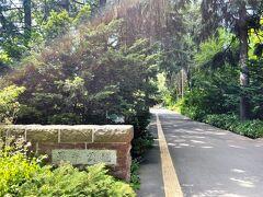 ★豊平公園★  道の駅当別から20キロ弱走り、やってきたのは豊平区美園にある豊平公園。 ここは5月初めにはムスカリ、6月初めには藤の花を見に来て、今月は、アジサイが目的。  今日は暑いけど、うっそうと生い茂る樹木のおかげで少しは涼しいかな。