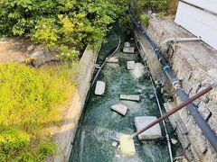 川湯温泉 お宿 欣喜湯に到着ー。 駐車場に車を停めて、温泉がじゃぶじゃぶ流れてる川を渡って…