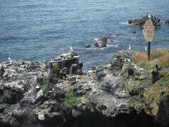 鉢巻を巻いているのが人面岩です