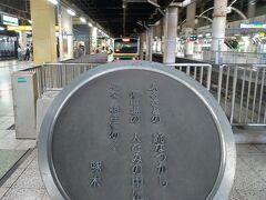上野(8:51)→宇都宮(10:34)宇都宮線 あえて上野で乗り換えました。 このホームに来るまでが遠いけれど、 この視点から電車を眺めるのが好きです。