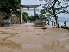 徒歩10分掛からず、厳島神社の入口です。 残念ながら大鳥居は修復中でした。
