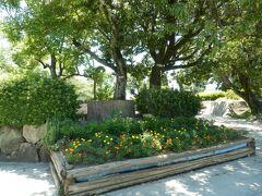ドン突きが「高槻城公園」として市民憩いのオアシスです、  江戸時代には南大手門や武家屋敷が在ったところですね。  *旧高槻城址公園から改名されました 詳細はクチコミでお願いします