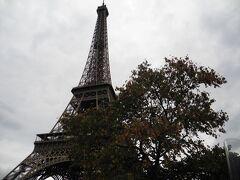 黄色がかった緑の葉の木とエッフェル塔。