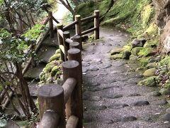 渓流沿いに降りて行きます。