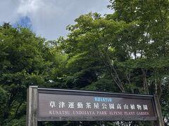 この森は道の駅草津運動茶屋公園というのが正式名称のよう・・・