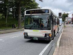 駅前のバス乗り場から、中禅寺温泉に向かうバスに乗車。今回は湯元温泉行きのバスに乗り、1時間ほどかけていろは坂を越えました。