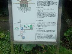 9時30分にチェックアウトして、昨日のタクシー運転士から教わった、ホテル近くのパワースポット「江田神社」に参拝しました。