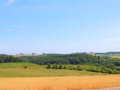 """ここは黒澤明のオムニバス映画である""""夢""""の中の一話である""""鴉""""に出てくる麦畑で、フランスの田舎のオーヴェールの風景を模して、この角度で撮影したそうだ。  鴉の撮影場所は他にもあり、有名なメルヘンの丘も映画の中に使われている。"""