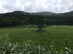 大江湿原は三本落葉松の尾瀬塚が見えてきた。沼尻から1時間半ほどかかってしまった。