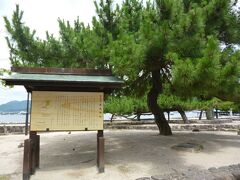 宮島に着きました。