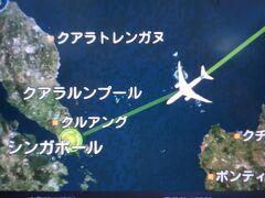 1日目 12月26日(木)    羽田空港10:45発 ANAでチャンギ空港(約8時間)へ   18:30 ホテルへチェックイン   初めてのシンガポール旅行時には、時間効率を考えて夜便での移動としていました。しかし、どうしても次の日に影響してしまうため、最近は昼便を利用することとし最新のシネマ等を見て楽しむことに変えました。  羽田空港10:45発のANA便を利用し、約8時間でチャンギ空港に到着です。  ■年末のチャンギ空港からホテルへ  今回で4回目のシンガポール、前回は3年前ですが見覚えのある空港の風景を見るとチャンギ空港に戻ってきたとの感覚があります。