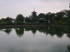 荒池に写る、興福寺の塔