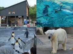 観光の最後は旭山動物園へ。愛らしい動物たちに癒されました。