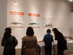 爬虫類の展示ですが、あまり好きではないが、面白くないのかというと面白い。人気はありそうです。
