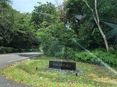 そして午後1時、アマネムに到着です! 木々の中にミニマムなサイン。