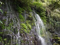 高千穂峡へ 高千穂神社から歩いて15分ということで歩いたがすごい勾配のS字カーブを下っていく。帰りは絶対歩きたくない… 坂を下る途中の道には天然の滝が