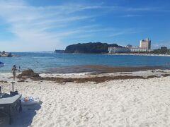 チェックインまで時間があるので白良浜でひと泳ぎ。あれっ 海藻が浮いててあまり海のコンディションは良くなさそう。