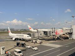 一つ目の目的A350!エアバスの最新鋭機乗ってみたかったんだよね!