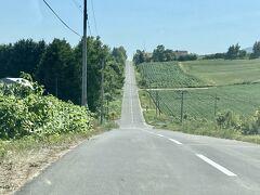 続いてきたのはジェットコースターの道。 アップダウンの激しいまっすぐな道が続きます。 周囲の景色もきれいです。