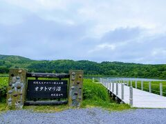 バスは、「オタトマリ沼」へ  変わらず利尻富士のお姿がありません。。  沼を一周する遊歩道もあります。