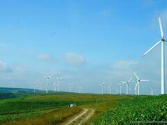 この日本離れした景色。宗谷ならではですよね。 この風車のある景色が見たかったんですよね。