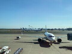 沢山の飛行機が駐機中