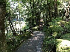 このような遊歩道が川沿いに整備されています。