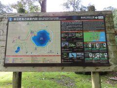 湯之元温泉か10分程で御池のキャンプ場に到着しました。ここから更に森の奥に入ったところに野鳥の森があるそうなのです。地図でいうとピンク色のコースです。まずはキャンプサイトで情報収集です。
