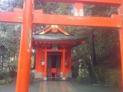 初めての箱根神社
