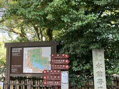 水前寺成趣園へ。