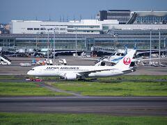 ●2021/7/25(日)  台風6号のせいで出発が2日遅れましたが、 JAL971(羽田9:20→石垣12:15)で出発です。