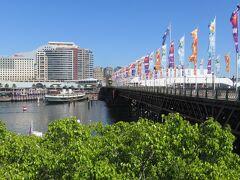 ダーリングハーバーを跨ぐピアモント橋。 欄干の幟旗がカラフルで見ているとなんかワクワクして来ちゃうんだよね♪