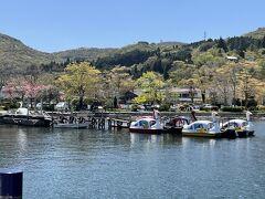 神奈川県・箱根町「箱根町港」の芦ノ湖倶楽部ボート乗り場  スワンボートの写真。