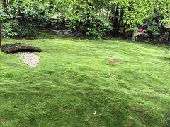 野々宮神社の苔庭も雨が降ってしっとりしていました。