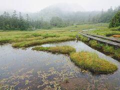 複数の小池や浮島の間にボードウォークがはしります。 天国的な場所です。