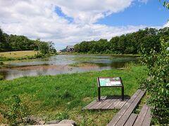 大沼池入り口からバスに乗ろうと思ったけど、ちょっと間に合わず、仕方なく歩いて蓮池まで戻りました。 徒歩で20分くらいでした。
