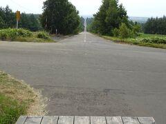 オシンコシンの滝から20分ほどで到着したのがこちら、天に続く道。