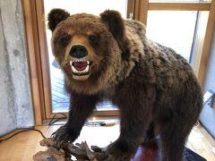 昼過ぎ下山し、昨日お借りしたクマ撃退スプレーをセンターに返却しに来ました。