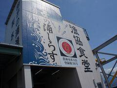 翌朝は朝食を軽めにして 田子の浦漁協食堂へ