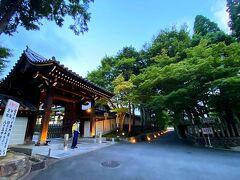 東福寺 / 日下門  やって来たのは「国宝ライトアップ 特別夜間拝観・青もみじライトアップ 特別散策」を開催中の東福寺。(8月9日まで) 当初はGWに開催される予定だったそうだが、緊急事態宣言に伴い延期となったようです。って今もあまり状況は変わらんですが(:_;)  門のところにいらした警備員の方、私たちが写真撮ろうとしたらうつむいてくれちゃった(苦笑)すみません...