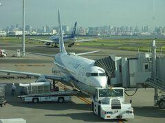 旅行日1日目(7月21日)、ということで、青ヶ島の旅のスタートは八丈島へ行くことが重要です。 ANAに乗ってひとっ飛びで八丈島へ行ってから…、